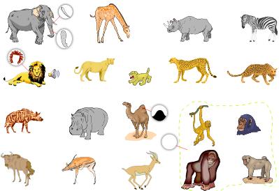 wild animals list